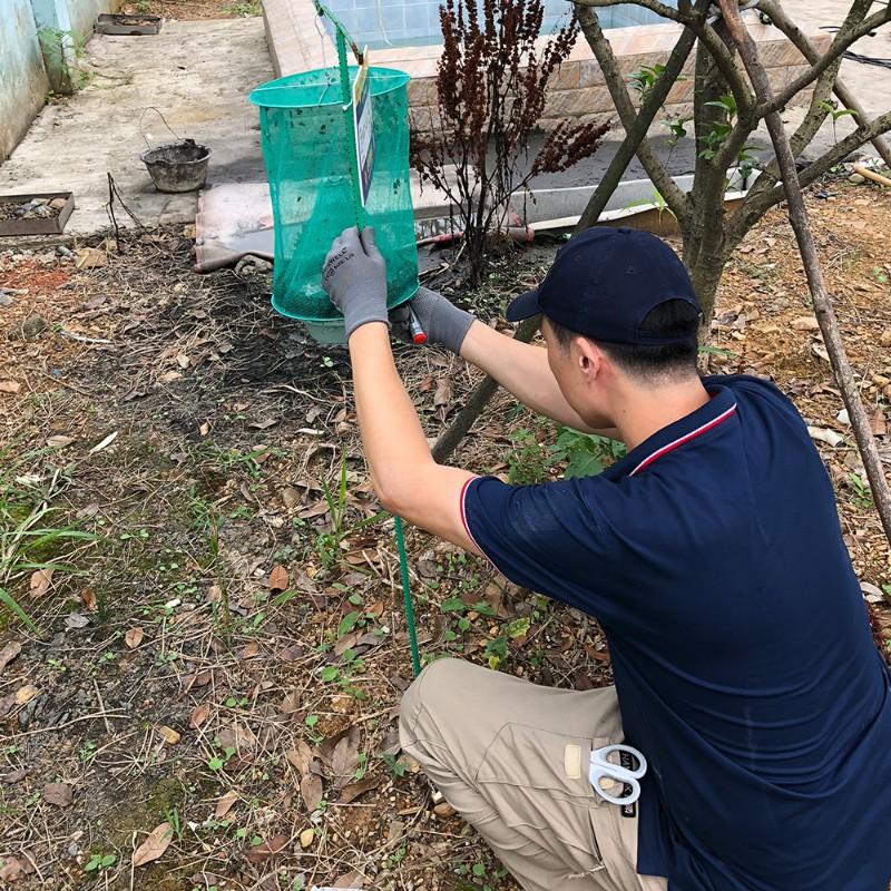 、京山地区除虫除蚁提供行业虫害消杀解决方案