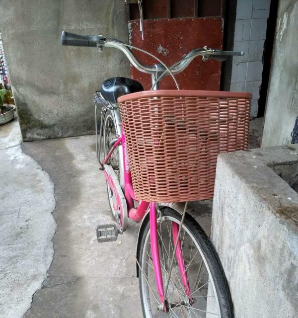 9成新 牌自行车出售