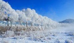 冰城哈尔滨激情亚布力滑雪双飞4日游